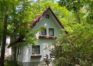 軽井沢の別荘管理を始めました。